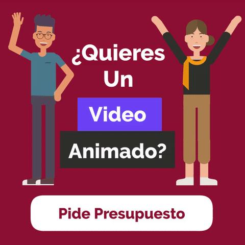 presupuesto videos animados